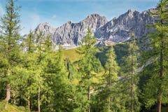 Il fronte del sud del massiccio di Dachstein - Austria Immagine Stock