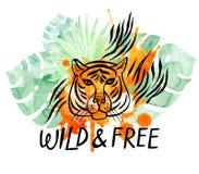 Il fronte della tigre selvaggia e libera Illustrazione dell'acquerello fotografia stock libera da diritti