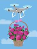 Il fuco consegna l'amore di Valentine Day del mazzo delle peonie di rosa del canestro del regalo illustrazione di stock