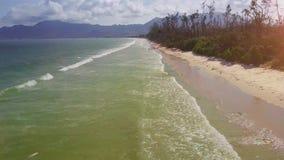Il fuco si muove lungo la spiaggia di sabbia lavata lungamente dalle onde dell'oceano largamente video d archivio