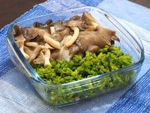 Il fungo di ostrica ed il rampicante bolliti di primavera odorosa in chiara ciotola e sono stati disposti sulla tovaglia blu Fotografia Stock