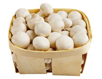 Il fungo prataiolo si espande rapidamente in un canestro di legno su bianco Fotografie Stock Libere da Diritti