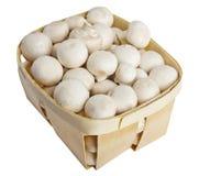 Il fungo prataiolo si espande rapidamente in un canestro di legno su bianco Immagini Stock Libere da Diritti
