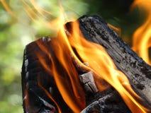 Il fuoco fotografia stock libera da diritti