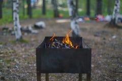 Il fuoco fotografie stock