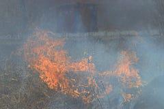 Il fuoco brucia le case con mattoni a vista del campo di erba Fotografie Stock Libere da Diritti