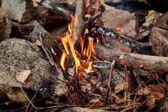 Il fuoco di accampamento è acceso nei ramoscelli asciutti della foresta di autunno che bruciano su un fondo delle foreste dorate  Fotografia Stock