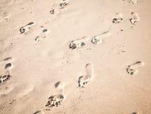 Il fuoco ed il tono morbidi delle orme sulla spiaggia tropicale insabbiano lo spirito Fotografia Stock