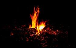 Il fuoco masterizza dalle foglie di combustione nello scuro fotografia stock
