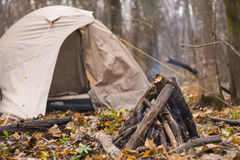 Il fuoco nella foresta nella tenda del fondo Fotografia Stock