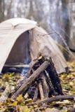 Il fuoco nella foresta nella tenda del fondo Immagine Stock
