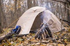 Il fuoco nella foresta nella tenda del fondo Fotografie Stock Libere da Diritti
