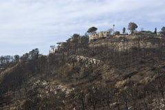 Il fuoco rimane in montagne di Carmel Immagine Stock Libera da Diritti