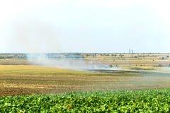 Il fuoco sul campo, erba asciutta brucia in autunno immagini stock