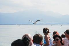 Il gabbiano si avvicina alla barca sul lago Chiemsee immagine stock libera da diritti