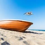 Il gabbiano sorvola la barca Fotografia Stock