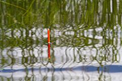 Il galleggiante da pesca si siede verticalmente in acqua calma fotografia stock