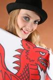 Il Galles Fotografia Stock