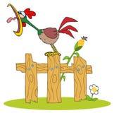 Il gallo ha fatto un passo sulla rete fissa Immagini Stock Libere da Diritti