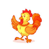 Il gallo variopinto ha alzato un'ala su Fotografie Stock Libere da Diritti
