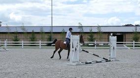 Il galoppo leggero del cavaliere sul cavallo all'arena stock footage