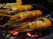 Il gamberetto d'acqua dolce gigante del gamberetto dei frutti di mare ha grigliato su carbone caldo Fotografia Stock Libera da Diritti