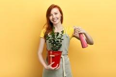 Il garderner positivo prende la cura dei fiori fotografie stock libere da diritti