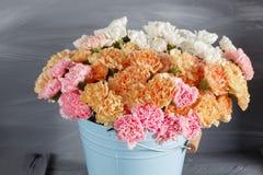 Il garofano rosa, arancio, bianco fiorisce in secchio blu su vecchio legno Immagini Stock