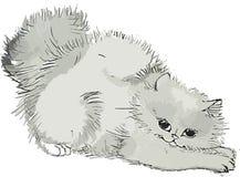 Il gattino sveglio ha incurvato indietro, lvpki estratto, in bianco e nero, lanuginoso, illustrazione royalty illustrazione gratis