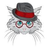 Il gatto è stato disegnato a mano Vettore del gatto Gatto con i vetri ed il cappello Fotografia Stock Libera da Diritti