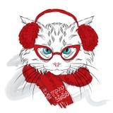 Il gatto è stato disegnato a mano Vettore del gatto Gatto nei vestiti di inverno Fotografie Stock