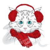 Il gatto è stato disegnato a mano Vettore del gatto Gatto nei vestiti di inverno Immagine Stock