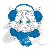 Il gatto è stato disegnato a mano Vettore del gatto Gatto nei vestiti di inverno Fotografia Stock