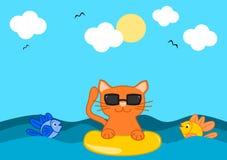 Il gatto arancio e l'estate Fotografia Stock Libera da Diritti