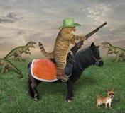 Il gatto con una pistola pasce i draghi fotografia stock libera da diritti