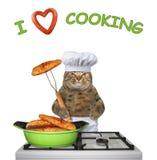 Il gatto cucina il pesce fritto su una stufa 2 immagine stock libera da diritti