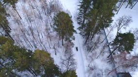 Il gatto delle nevi guida tramite una strada nevosa nella foresta stock footage