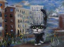 Il gatto domestico Fotografia Stock