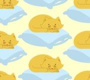 Il gatto dorme sul modello senza cuciture del cuscino Ornamento del gattino di sonno Immagine Stock Libera da Diritti