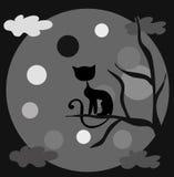 Il gatto e la luna Fotografia Stock