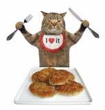 Il gatto mangia i tortini 2 della carne immagini stock
