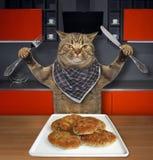 Il gatto mangia i tortini della carne in una cucina fotografia stock libera da diritti