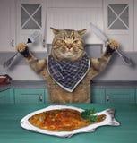 Il gatto mangia il pesce nella cucina immagini stock