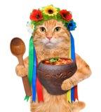 Il gatto nel costume ucraino tradizionale tiene in borsch rosso nazionale delle zampe Fotografia Stock Libera da Diritti