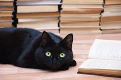 Il gatto nero si trova sul pavimento accanto ad un libro aperto Libri nei precedenti Coseup fotografia stock libera da diritti