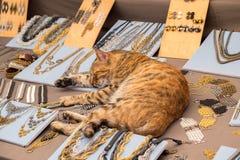 Il gatto rosso divertente dorme sul contatore con gioielli al mercato dell'artigianato immagine stock