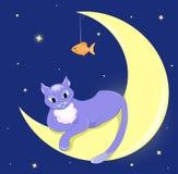 Il gatto si trova su una luna mezza. Fotografie Stock