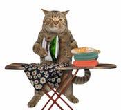 Il gatto sta rivestendo di ferro i vestiti fotografia stock