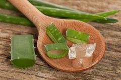Il gel di vera dell'aloe su un cucchiaio di legno e sulle foglie fresche verdi affetta dicembre Fotografia Stock