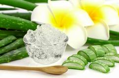 Il gel puro di Vera dell'aloe su aloe vera va e fondo di plumeria Fotografie Stock